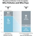 Polluters should Pay